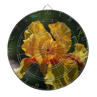Iris barbu jaune jeu de fléchettes