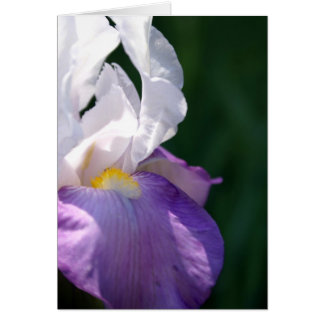 Iris Beauty Card