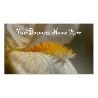 Iris blanc et jaune ; Promotionnel Carte De Visite