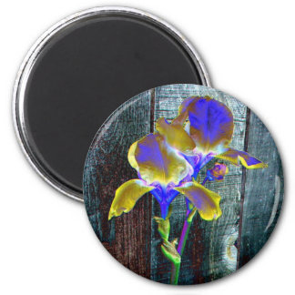 Iris bleu et jaune d'aimant de fantaisie des magnet rond 8 cm