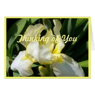 Iris bleu jaune de rougissement carte de correspondance