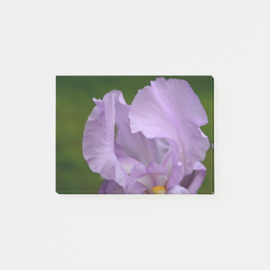 Iris Bliss Post-it® Notes