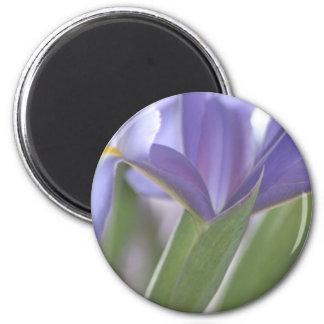 Iris Bud magnet