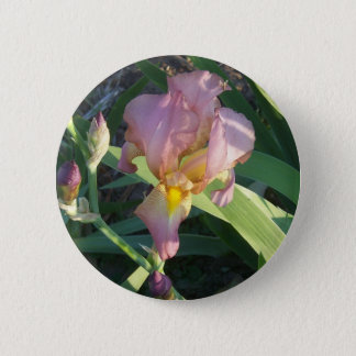 Iris Button Round