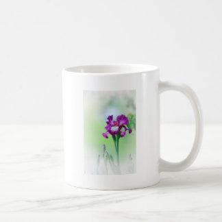Iris dans le jardin tasse