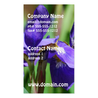 Iris de floraison modèles de cartes de visite