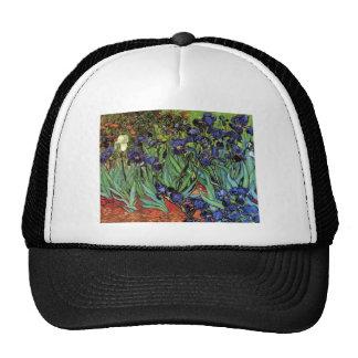 Iris de Van Gogh, art vintage de post Casquettes