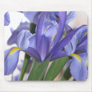 Iris Explosion mousepad