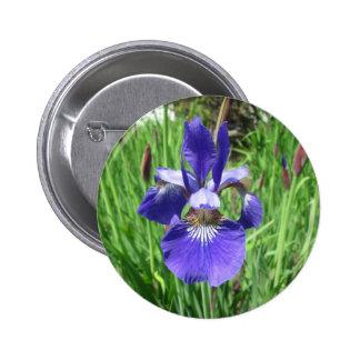 Iris Flower Blue Flag 2 Inch Round Button