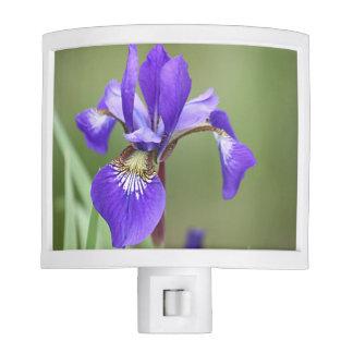 Iris flower photo night lite