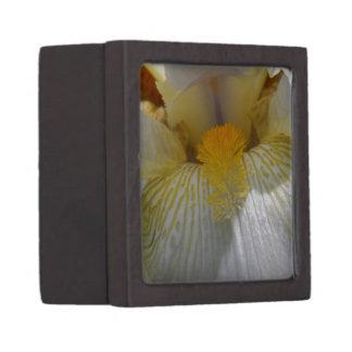 Iris Flower Photograph Premium Trinket Box