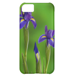 Iris Flowers iPhone 5C Case