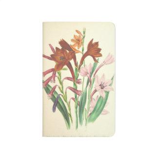 Iris flowers journal