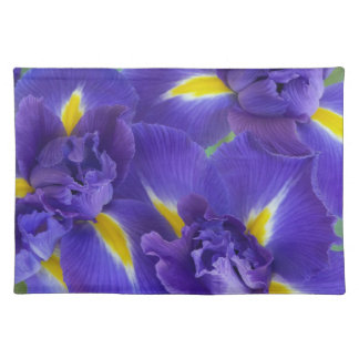 Iris flowers placemat