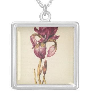 Iris, from 'La Guirlande de Julie', c.1642 Silver Plated Necklace