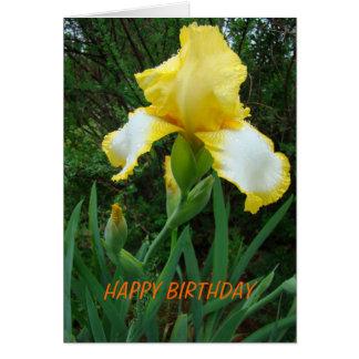 Iris jaune, anniversaire cartes de vœux