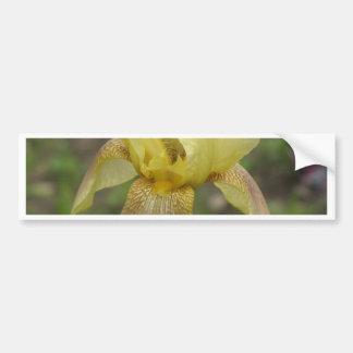 Iris jaune autocollant de voiture