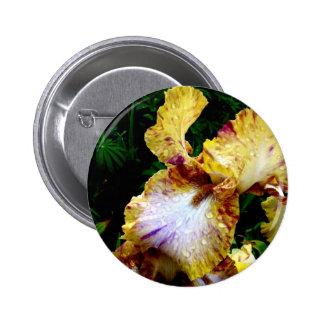 Iris jaune badges avec agrafe