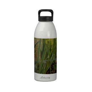 Iris jaune bouteilles d'eau