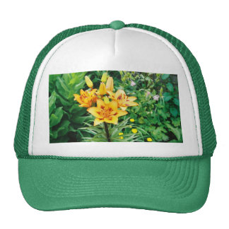 Iris jaune casquette trucker