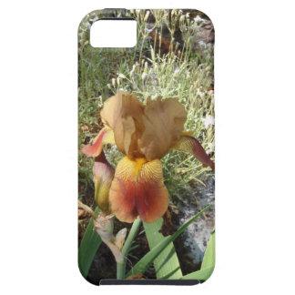 Iris jaune coques iPhone 5