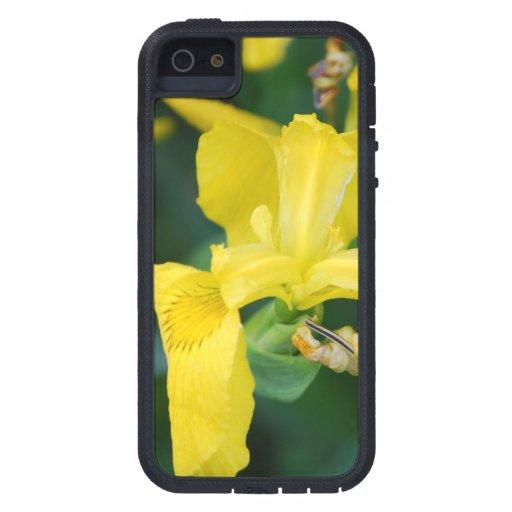 Iris jaune coque Case-Mate iPhone 5