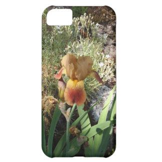 Iris jaune coques pour iPhone 5C