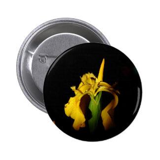 Iris jaune de l eau badges avec agrafe