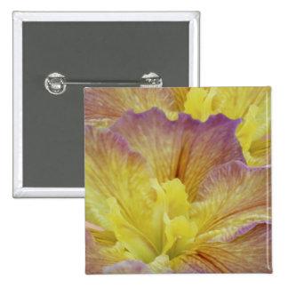 Iris jaune et sa signification pin's avec agrafe