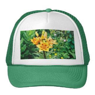 Iris jaune casquettes de camionneur