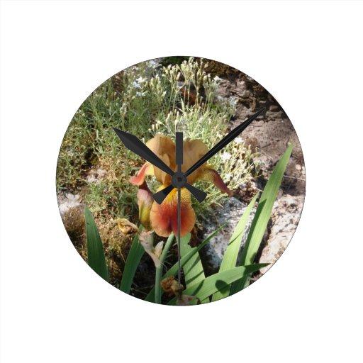 Iris jaune horloges murales