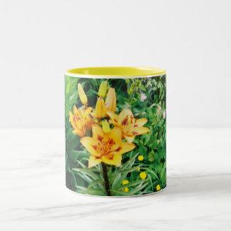 Iris jaune mug bicolore