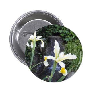 Iris jaune pâle badges