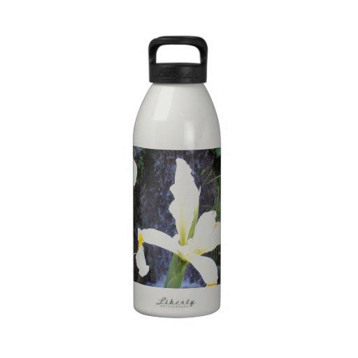 Iris jaune pâle bouteille d'eau réutilisable