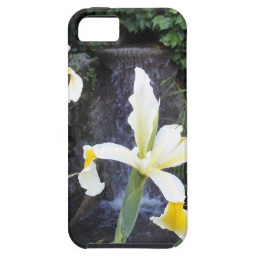 Iris jaune pâle étuis iPhone 5