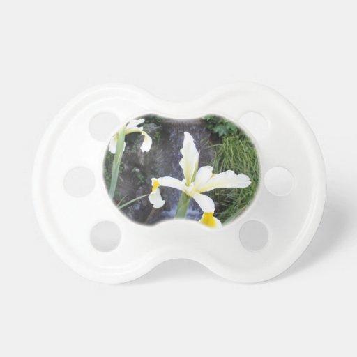 Iris jaune pâle tétines pour bébé