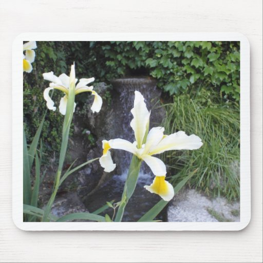 Iris jaune pâle tapis de souris