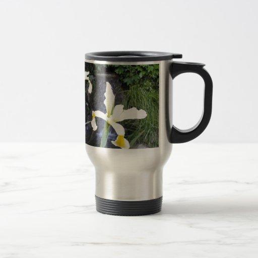Iris jaune pâle tasse à café