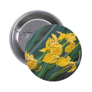Iris jaune pin's avec agrafe
