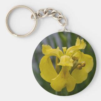 Iris jaune porte-clef