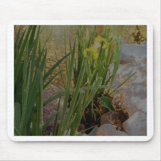 Iris jaune tapis de souris