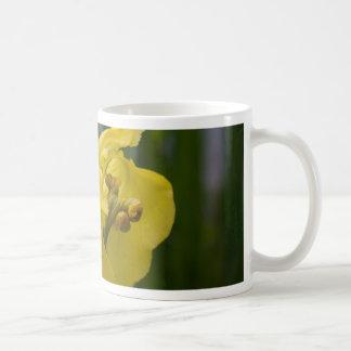 Iris jaune tasse à café
