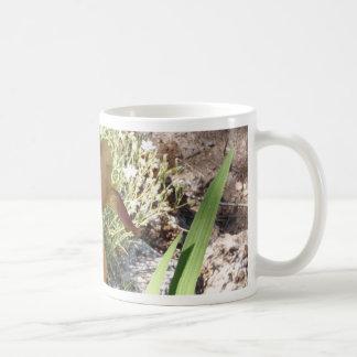 Iris jaune mugs
