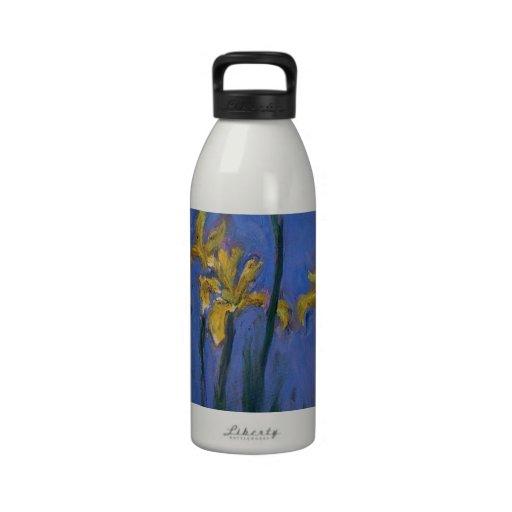 Iris jaunes bouteille d'eau