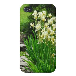 Iris jaunes coques iPhone 4