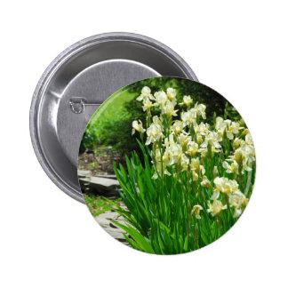 Iris jaunes de bébé badge avec épingle
