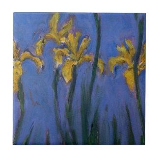 Iris jaunes petit carreau carré
