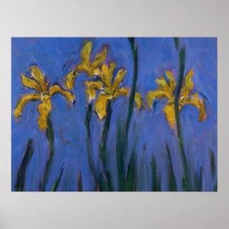 Iris jaunes posters