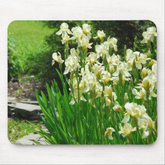 Iris jaunes tapis de souris