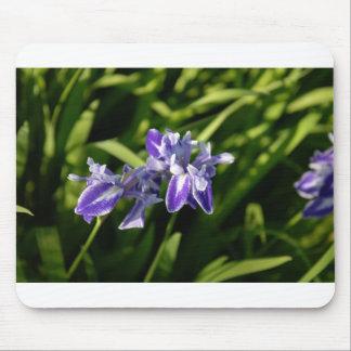 Iris Mousepad